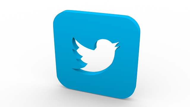 3D rendered image of twitter icon