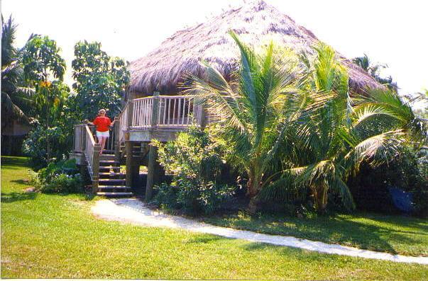 LIttle Palm Hut